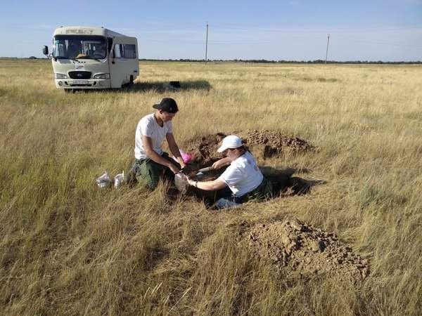 отбор почвы на мониторинг