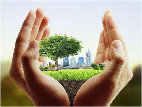 зеленый город в руках
