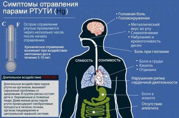 Влияние ртути на организм человека