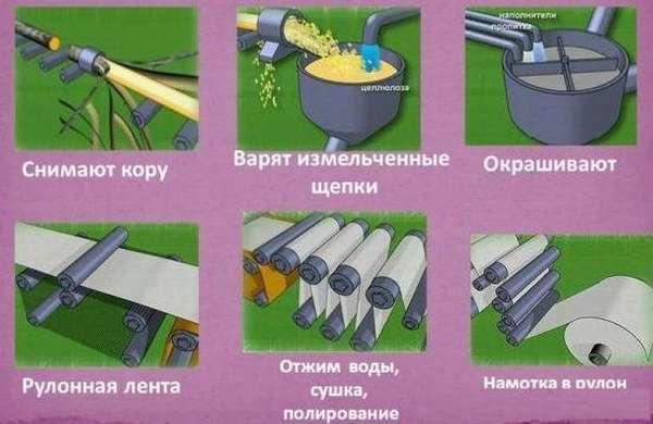 Изготовление бумажной основы