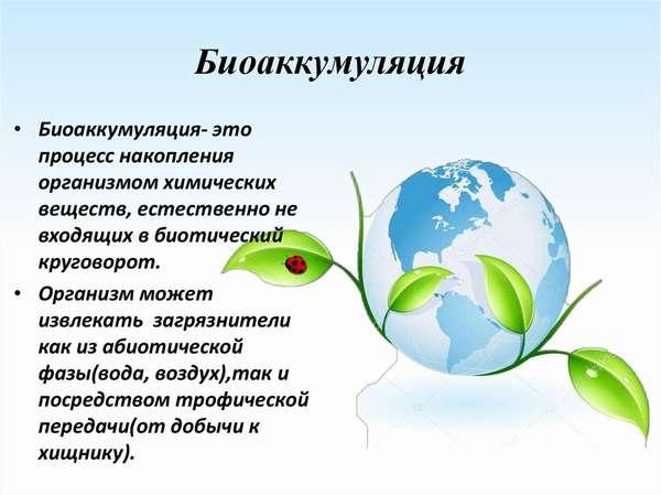 биоаккумуляция