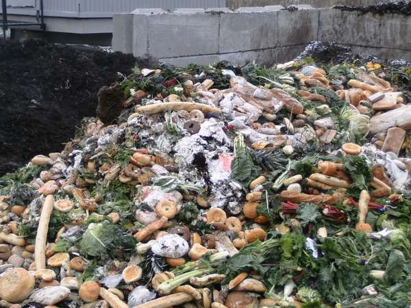 свалка пищевых отходов