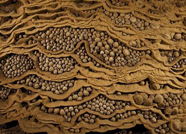 пещерный жемчуг