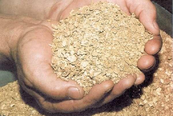 Что такое шлиховое золото, как оно добывается и сколько стоит сегодня