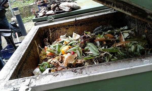 контейнер с пищевыми отходами