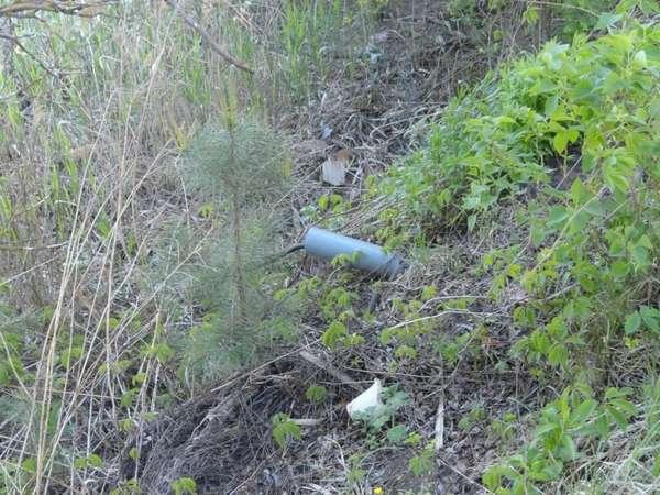 канализационный сток, загрязняющий почву и грунтовые воды